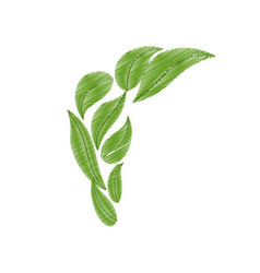 Drawing green bunch leaves natural vector