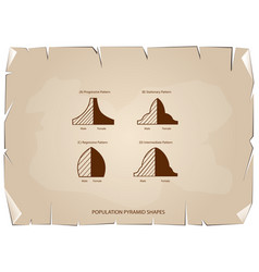 Four types of population pyramids on old paper bac vector