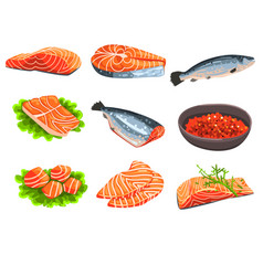 Fresh salmon fish set fillet steak and caviar vector