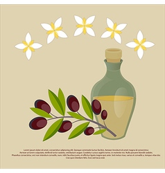 Organic olive oil Best quality olive flowers and b vector
