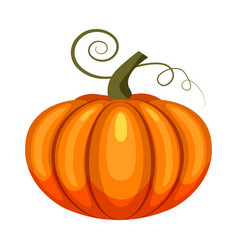 pumpkin holiday halloween character halloween vector image