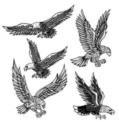 set eagles design element for logo label vector image