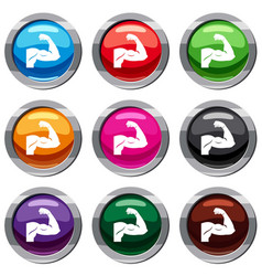 biceps set 9 collection vector image vector image