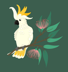 Cockatoo sits on a branch on a green background vector