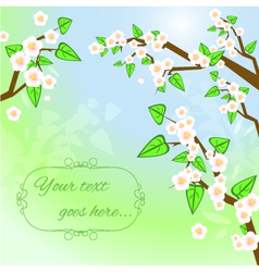 Decorative background with white blooming trees vector image vector image