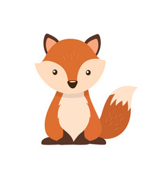 fox character flat style isolated on white vector image