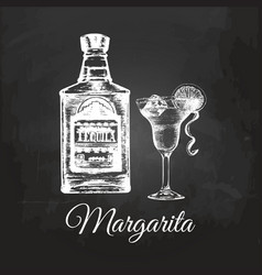 hand sketched tequila bottle and margarita glass vector image