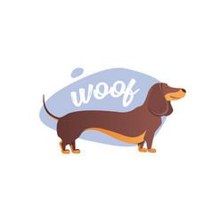 happy dog dachshund the style flat vector image