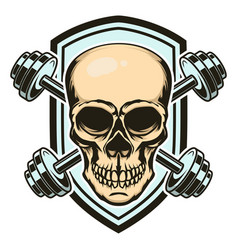 Sport emblem with skull and crossed barbells vector