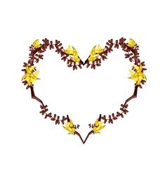 Bastard Teak Flowers in A Heart Shape vector image vector image
