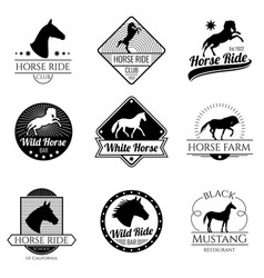 racing horse running mare vintage logos vector image