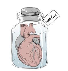 heart - funny anatomy joke vector image
