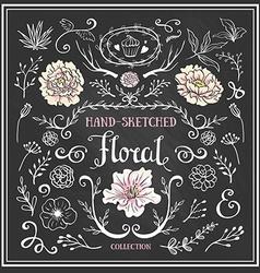 hand drawn vintage floral elements set flowers vector image