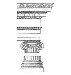 Ionic order reintroduced vintage engraving vector