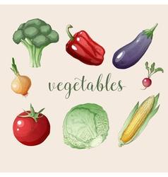 Vegetables Set in Vintage Style Healthy Food vector image