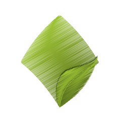 drawing green leaves card vector image