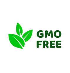 Gmo free green leaf label icon vector