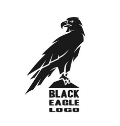 Monochrome eagle logo vector