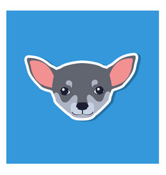 Little head of chihuahua dog front view flat icon vector