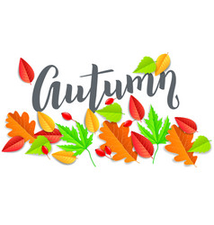 autumn horizontal banner with leaves vector image