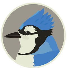 Blue jay bird wildlife animals round frame vector