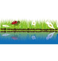 green grass near water vector image