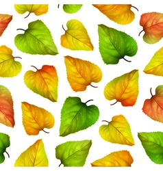 Seamless background colorful autumn leaves vector