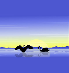 Silhouette of swan on water landscape vector