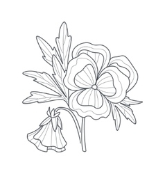 Pansy Flower Monochrome Drawing For Coloring Book vector image