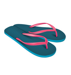 A pair beach flip-flops vector