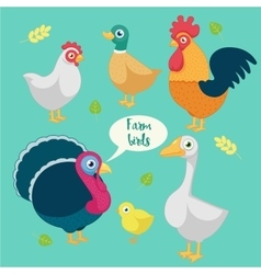 cartoon funny birds farm vector image