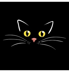 Cat face on black background vector