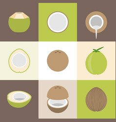 Coconut icons set vector