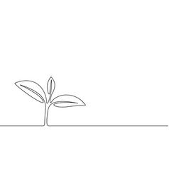 continuous one line growing sprout plant leaves vector image