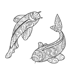 Koi carp fish coloring book for adults vector image