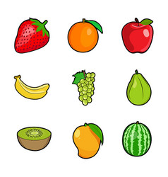 set fresh colorful fruits vector image