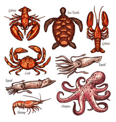 shellfish and marine animals sketches vector image