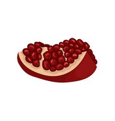 small slice of ripe pomegranate delicious fruit vector image