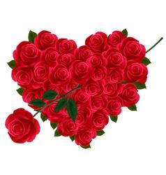 Valentine heart roses vector