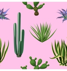 Seamless pattern with cactuses and succulents set vector image vector image