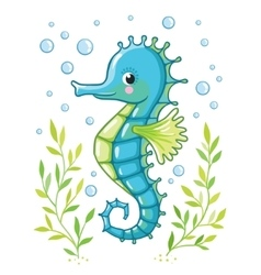 Cute cartoon Sea horse isolated vector image vector image