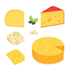 cheese types in cartoon style vector image