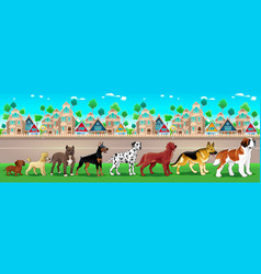 Collection of purebred dogs aligned on the town vector