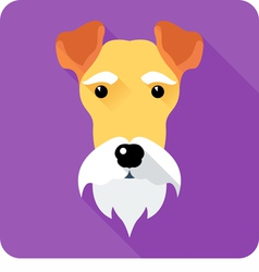 Fox Terrier dog icon flat design vector image