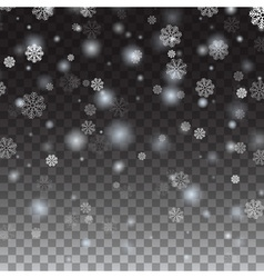 Isolated Falling snow on a transparent background vector image