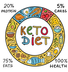 ketogenic circle keto diet infographic background vector image