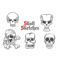 Skeleton skulls sketch icons set vector image