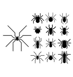 spider web silhouette arachnid fear graphic flat vector image