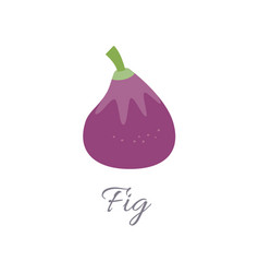 fig icon with title vector image