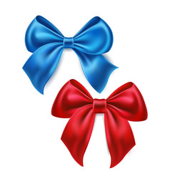 satin bow knot for celebration holiday vector image